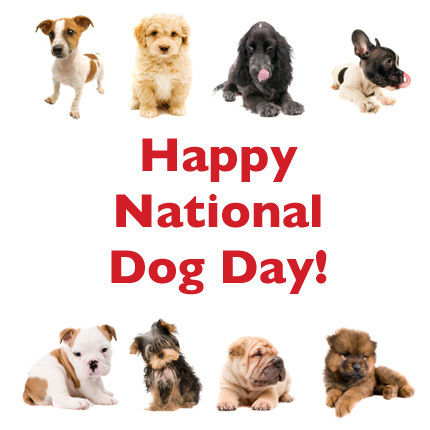 National-Dog-Day-2
