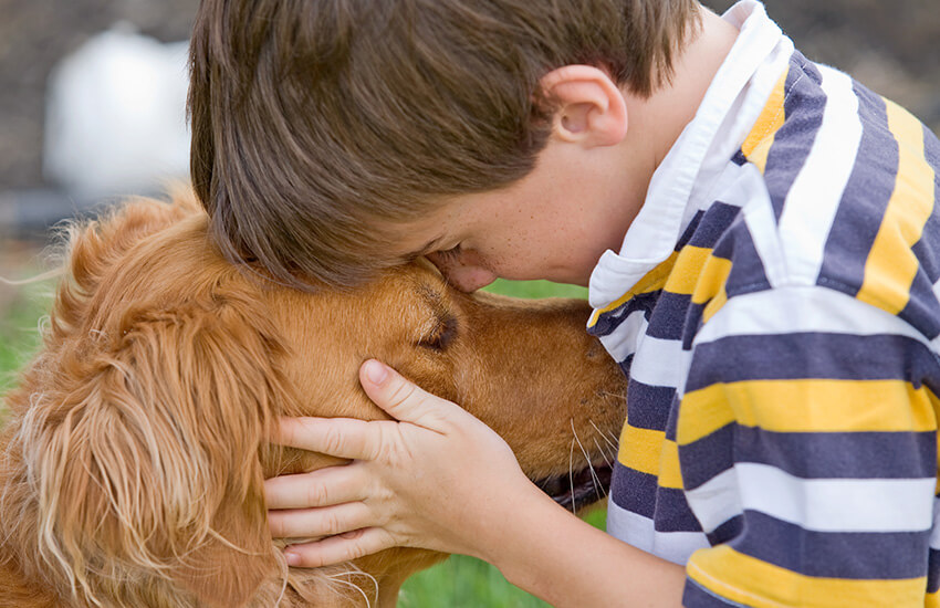 boy hugging dog golden retriever