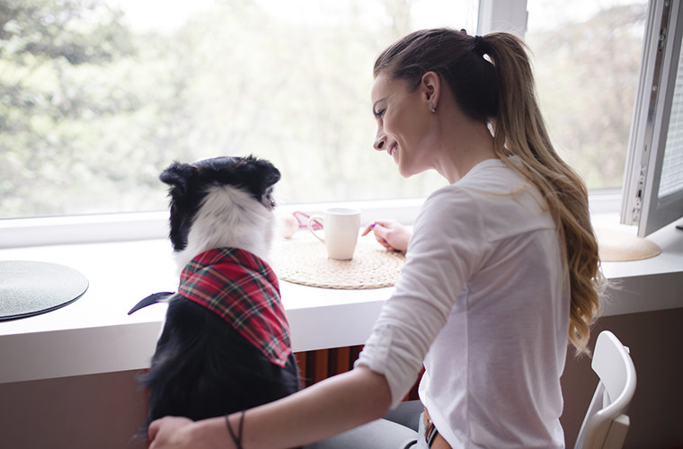 the ultimate pet sitter check list the paw print