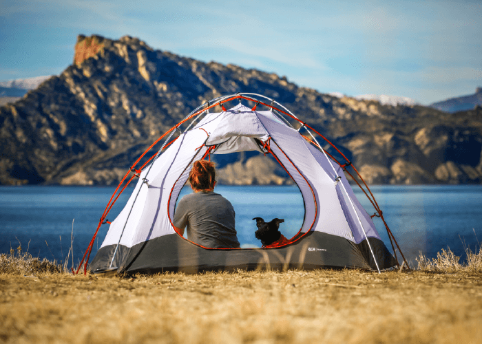 Picture of a woman and dog in a tent overlooking beautiful scenery. How to Take Your Pet Camping