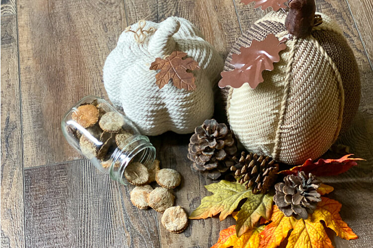 diy pumpkin spice oatmeal dog treats, glass jar with round, orange dog treats. 3 pine cones, leaves, and two cloth pumpkins