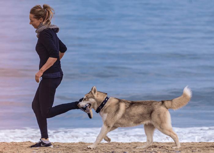 woman running on beach with husky