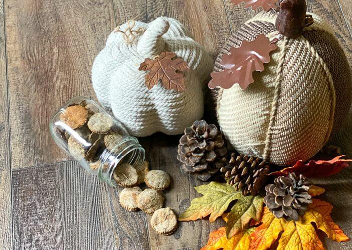 diy pumpkin spice oatmeal dog treats, glass jar with round, orange dog treats. 3 pine cones, leaves, and two cloth pumpkins